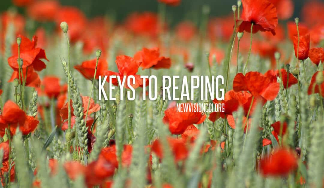 Keys to Reaping