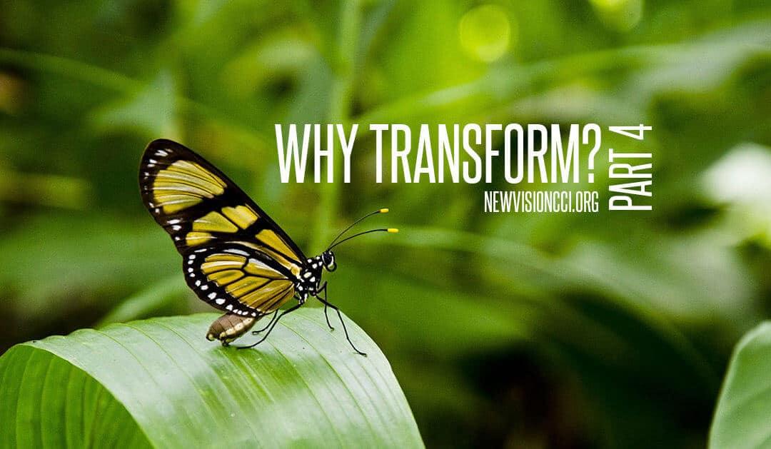 Why Transform? Part 4