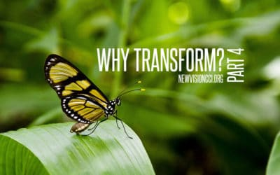 Why Transform? Part 4