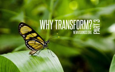 Why Transform? Part 3